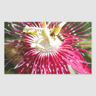 Red Passion Flower with Bee Rectangle Stickers