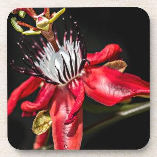 Red passionfruit flower glas underlägg