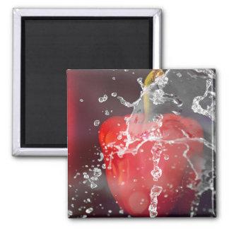 Red Pepper Splash 2 Inch Square Magnet