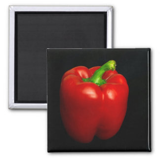 red pepper square magnet