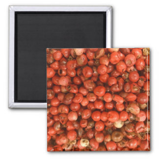 Red Peppercorns Square Magnet