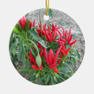 Red peppers hanging on the plant round ceramic decoration