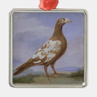 Red Pied Carrier Pigeon (oil on canvas) Silver-Colored Square Decoration