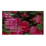 Red Pink and red begonias, Victoria, British Colum Business Card