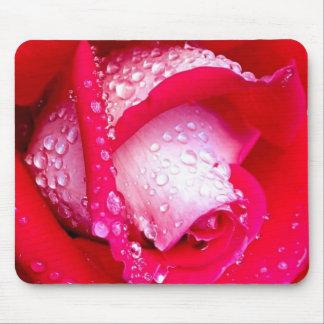 Red/Pink Dew-Kissed Rose Mouse Mat