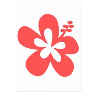 red pink hibiscus aloha flower postcard