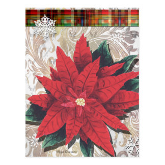 Red Poinsettia Christmas Postcard