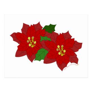 Red Poinsettia Flower Christmas Blossom Post Card
