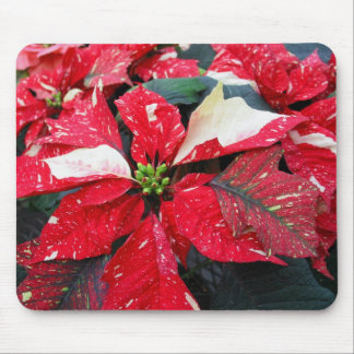 Red Poinsettia Mouse Mats