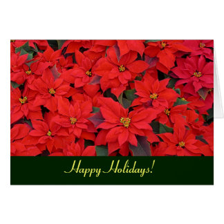 Red Poinsettias Holiday Card (Blank Inside)