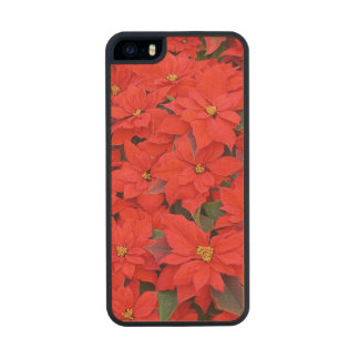 Red Poinsettias Holiday Carved® Maple iPhone 5 Case