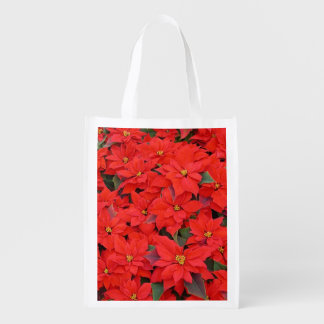 Red Poinsettias I Christmas Holiday Floral