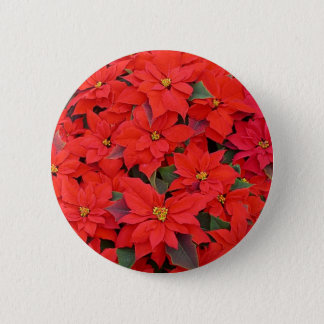 Red Poinsettias I Christmas Holiday Floral Photo 6 Cm Round Badge