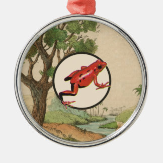 Red Poison Dart Frog Natural Habitat Illustration Christmas Ornament