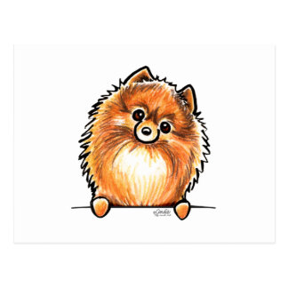 Red Pomeranian Paws Up Postcard