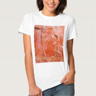 Red Pompeii T Shirts