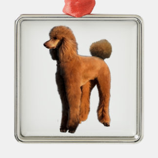 red poodle Silver-Colored square decoration