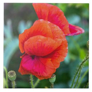 Red poppies ceramic photo tile