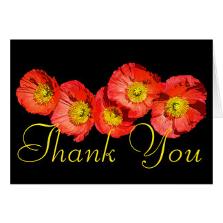 Red Poppies Colorful Photo Chic Floral Thank You Card