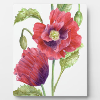 Red Poppies Floral Art Plaque