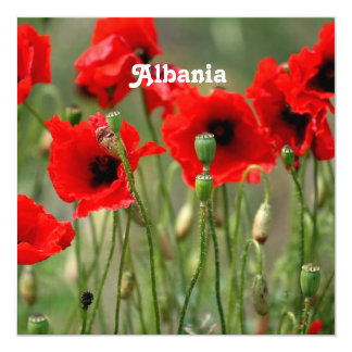 "Red Poppies 5.25"" Square Invitation Card"