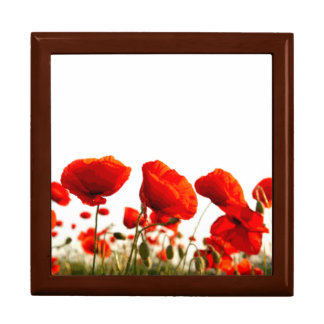 Red Poppies Large Square Gift Box