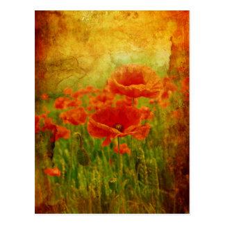 Red poppies vintage postcard
