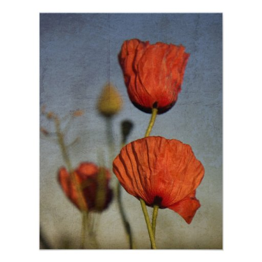 Red Poppies Wedding RSVP Card Personalized Announcement