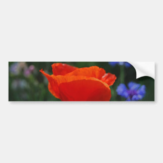 Red poppy and meaning bumper sticker