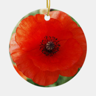 Red Poppy Christmas Christmas Ornament