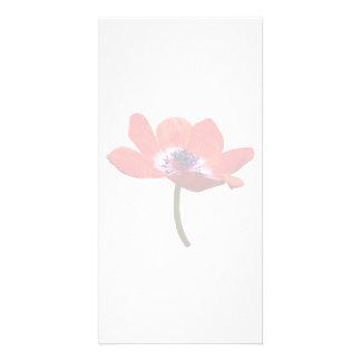 Red Poppy Closeup Custom Photo Card