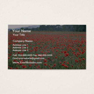 Red Poppy field, Kent, England flowers Business Card
