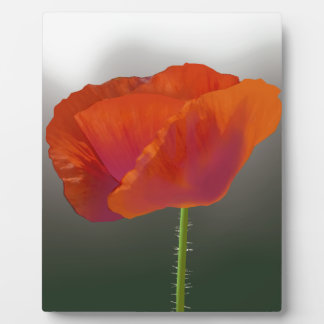 Red poppy Flower Plaque