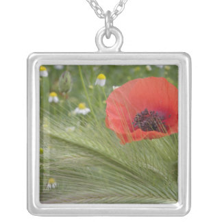 Red poppy flower, Tuscany, Italy Silver Plated Necklace