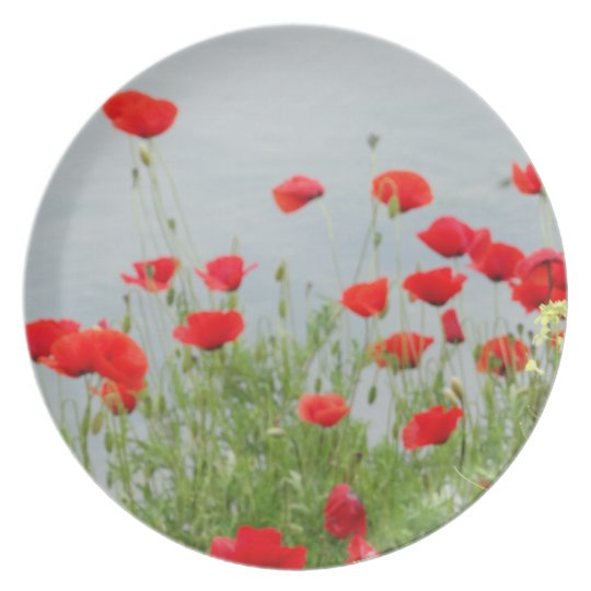 Red Poppy Flowers Decorative Plate
