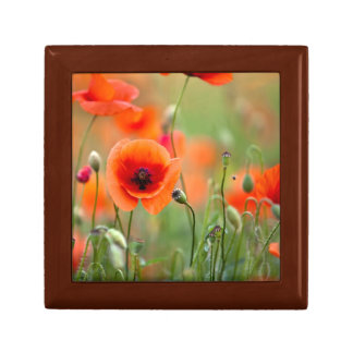 Red Poppy Flowers Keepsake Boxes