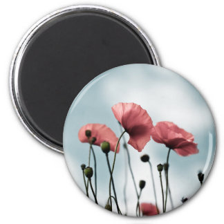 Red Poppy Flowers Fridge Magnets