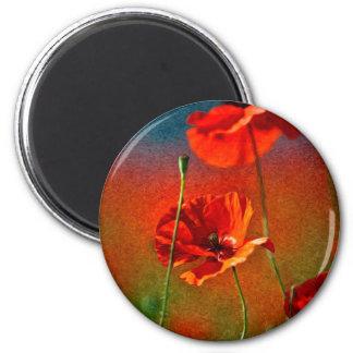 Red Poppy Flowers Refrigerator Magnets