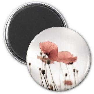 Red Poppy Flowers Magnet