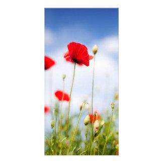 Red Poppy Flowers Photo Card
