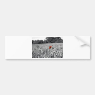 red poppy in a black and white field bumper sticker