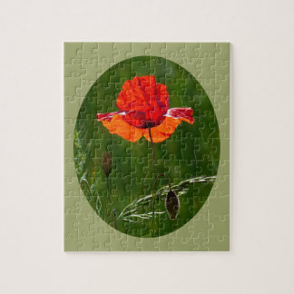 Red poppy in summer 02 jigsaw puzzle