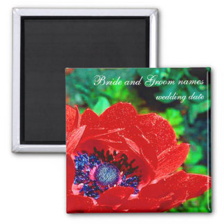 Red Poppy Magnet
