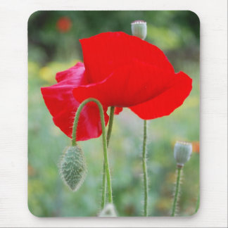 red poppy mouse mat