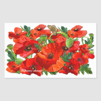 RED POPPY  ~  Rectangle  Stickers