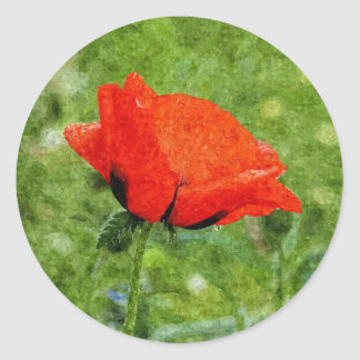 Red Poppy Round Sticker