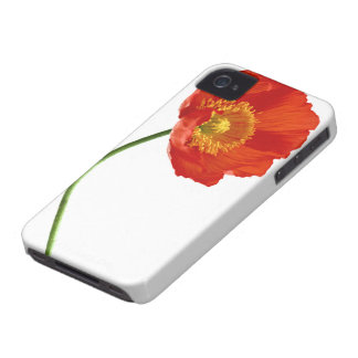 Red Poppy Simplicity Case-Mate iPhone 4 Cases