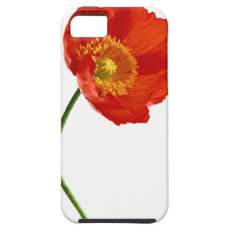 Red Poppy Simplicity Tough iPhone 5 Case