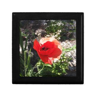 Red Poppy Trinket Box