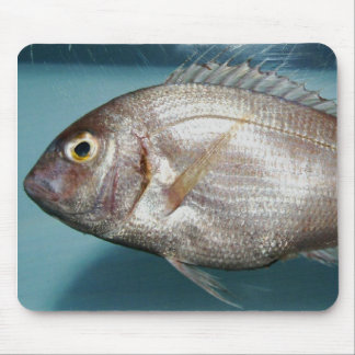 Red Porgy Mousepads
